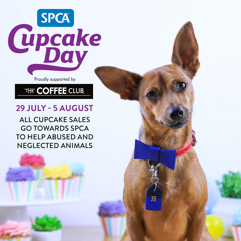 SPCA-Cupcake-Day-2019.jpg